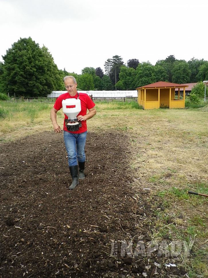 5. vysevame rovnomerne travni smes na pripravenou plochu