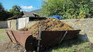 Troufli byste si použít sloní hnojivo nebo dáte přednost klasice? Které přírodní hnojivo zvolíte?