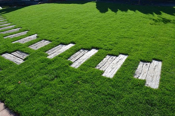 betonová dlažba jako dřevo