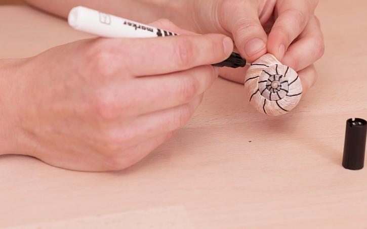 Malované šnečí ulity: nejdříve nakreslit obrysové linky, pěkně do spirály domečku
