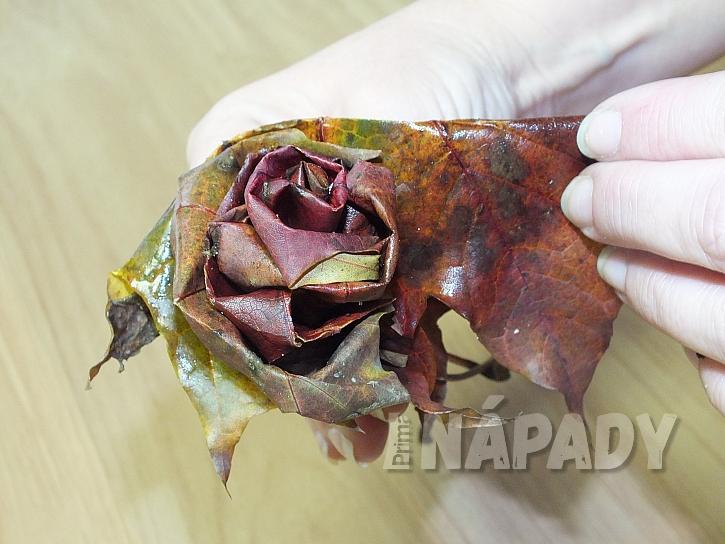 Růže z listů: cípy ohýbejte