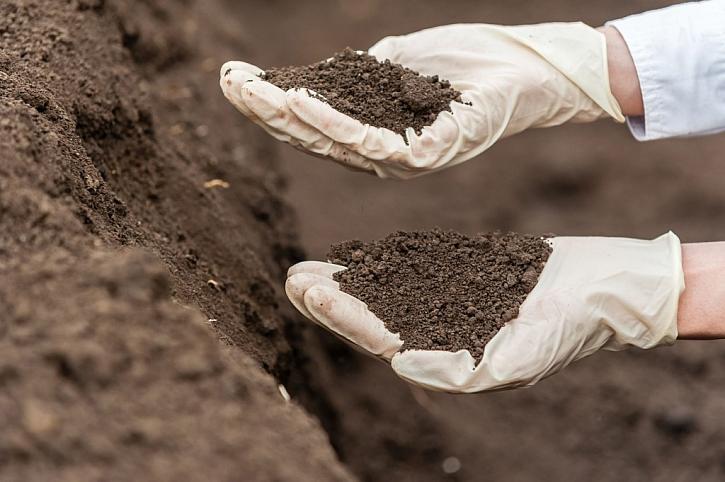 Kvalitní půda, která se drolí mezi prsty, je pro zahrádku ta nejlepší