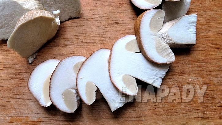 houbaření posiluje zdraví   2