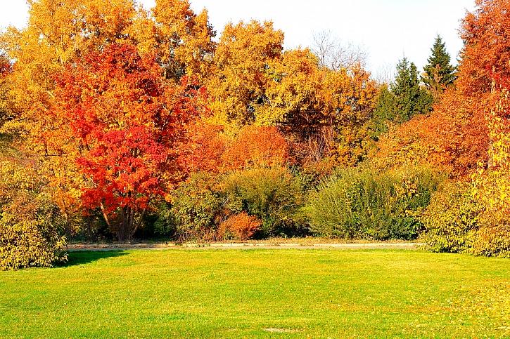 Na podzim je péče o trávník nezbytností (Zdroj: Depositphotos)