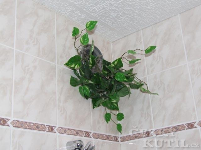 Kutil v koupelně
