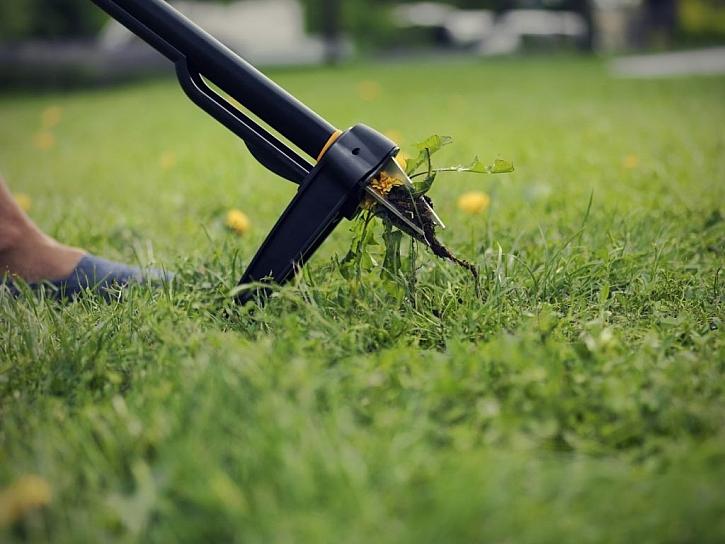 Zbavte se plevele hned z jara
