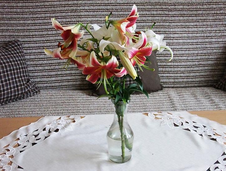 A co krása řezaných květů?