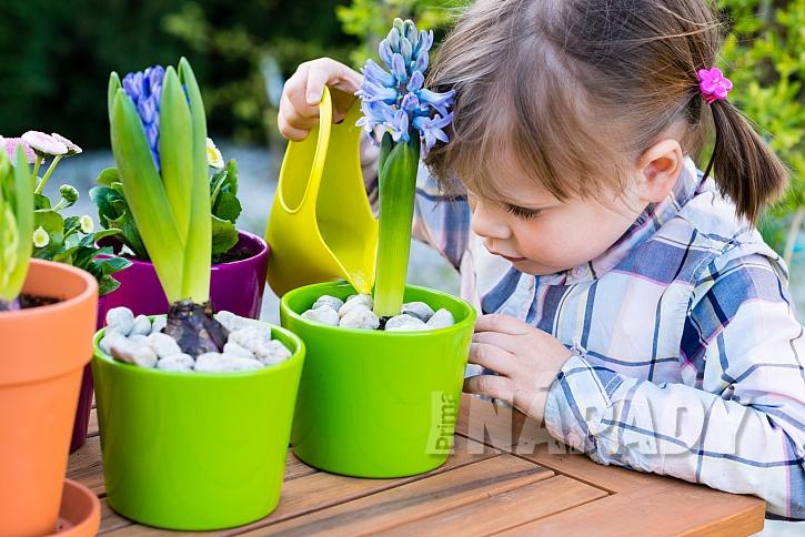 Dítě zalévá květiny