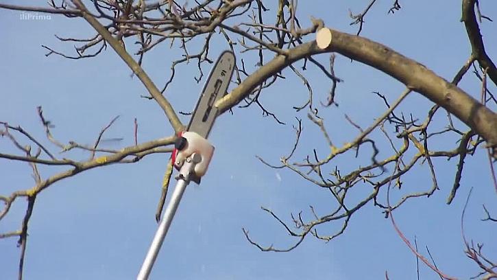 Řezání větví bez žebříku