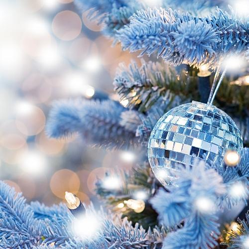 Jak jsme slavili vánoce