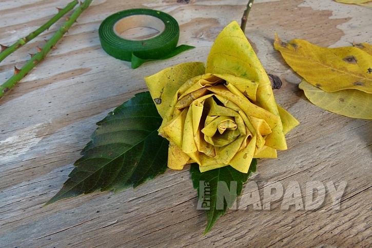 Růže z barevného podzimního listí: další růže