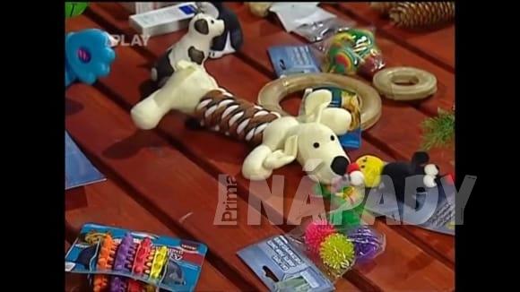 Tipy na vánoční dárky pro psy a rady pro zvládnutí silvestrovských oslav