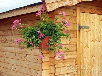Zalévání květin přes dovolenou (Zdroj: PePa)