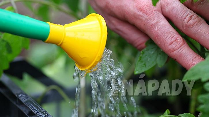 Nenechávejte odtékat dešťovou vodu jen tak: Můžete s ní zalévat zahradu, ale i splachovat záchod 2
