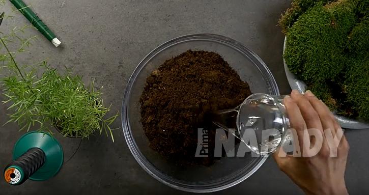 Kokedama z asparágusu: připravte substrát
