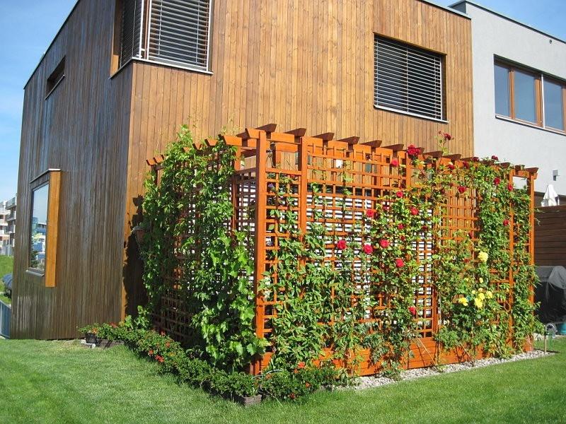 Zahradní pergola s mřížemi na pěstování popínavých rostlin
