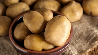 Brambory rostou rychle avšude. Už jste ochutnali modré brambory?