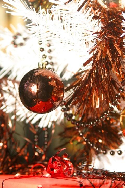 Vánoční dekorace aneb Stromky v módním kabátku