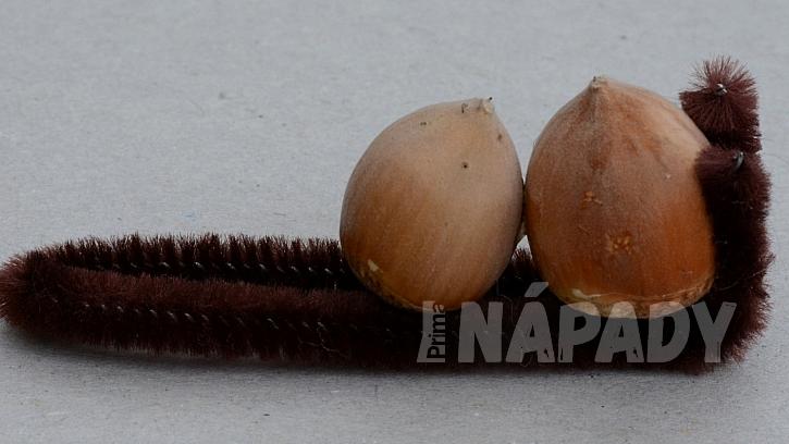 Veverky z lískových oříšků: přilepte k sobě a pak k drátku dva ořechy