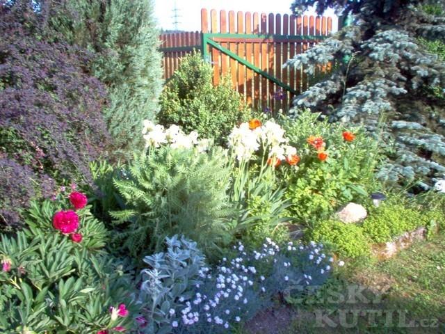 Zahrady čtenářů díl 9
