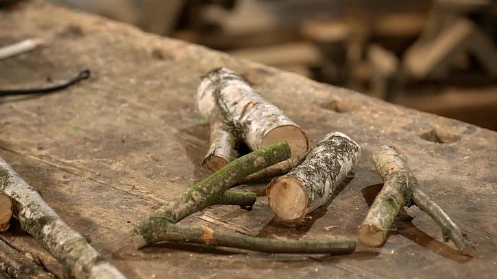 Nařezané větvě
