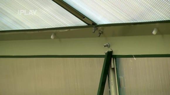 Výhody pěstování rostlin ve skleníku