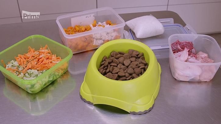 Výživa a krmení psa(Zdroj: Výživa a krmení psa)