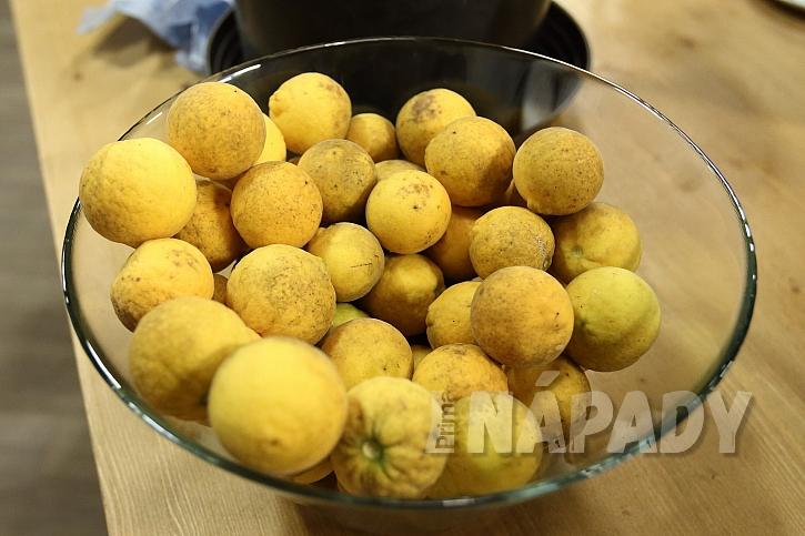 Úroda citronečníků
