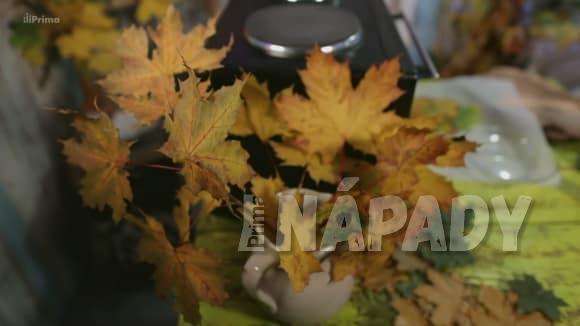 Dekorace z podzimního listí