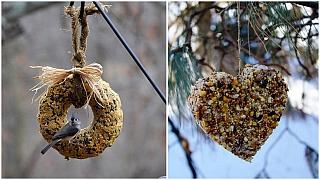 Bábovka i srdíčkový závěs na strom: Krmíme ptáčky
