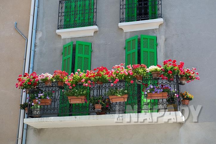 Balkony nejlépe ozdobíme záplavou květin v zářivých barvách (Zdroj: Depositphotos)
