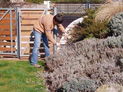 Jarní úklid na zahradě