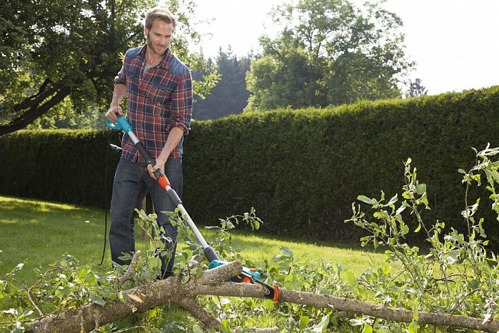 Prořezávání stromů a příprava dřeva