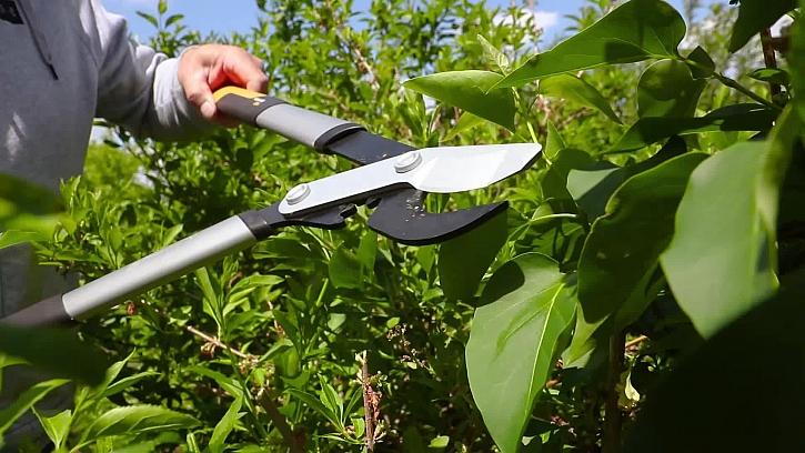 Údržba okrasné zahrady