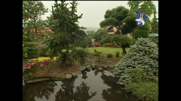 Zahrada v japonském stylu