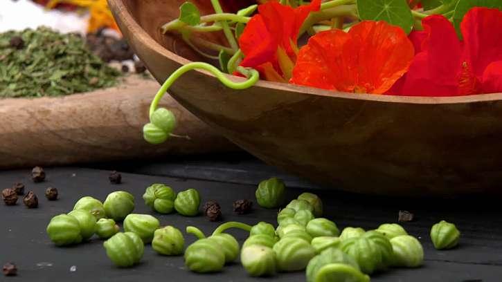 Tobolky se semeny.
