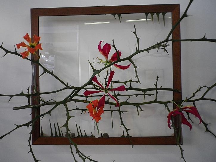 Květinové dekorace v prázdném rámu rozvíjejí fantazii (Zdroj: Ludmila Dušková)