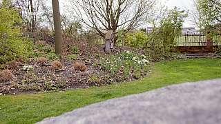 Plánujeme zahradu: Jak si poradit s úpravouterénu a kam odvést přebytečnou vodu