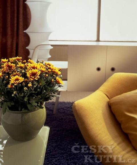 Místo vázy květináč