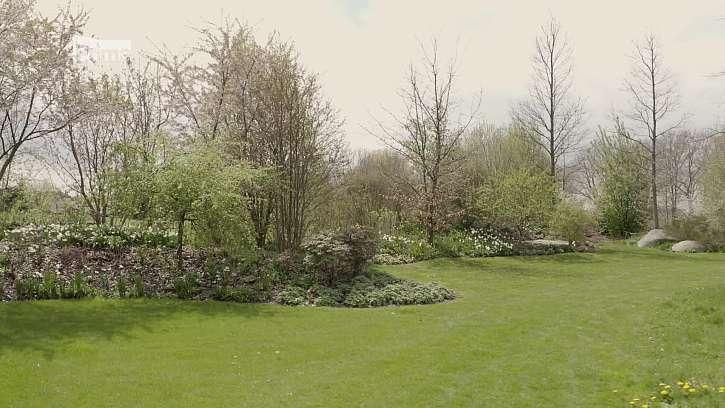 Principy navrhování zahrady