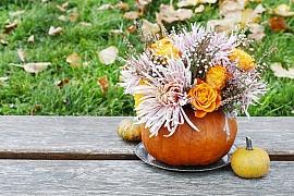 Vytvořte si podzimní květinovou vazbu v dýni
