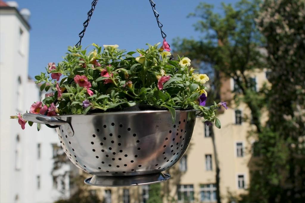 Jak pěstovat květiny v zavěšeném cedníku: Z kuchyně rovnou na terasu