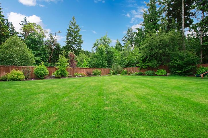 Správná péče o trávník je základ. Poradíme vám jak na to