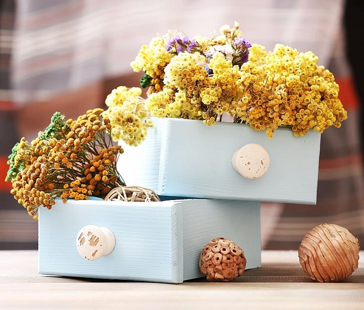 Sušené květy k dekoraci