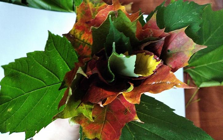 Listová květina