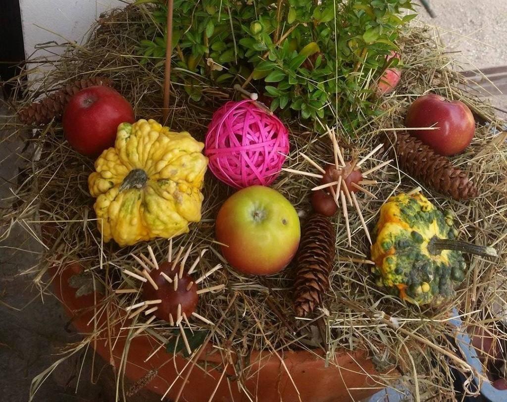 Podzimní výzdoba nejen z dýní