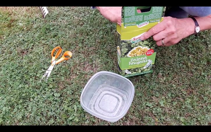 Příprava výsadby zeleného hnojení.