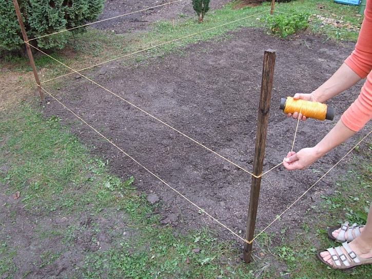 Dosít trávu