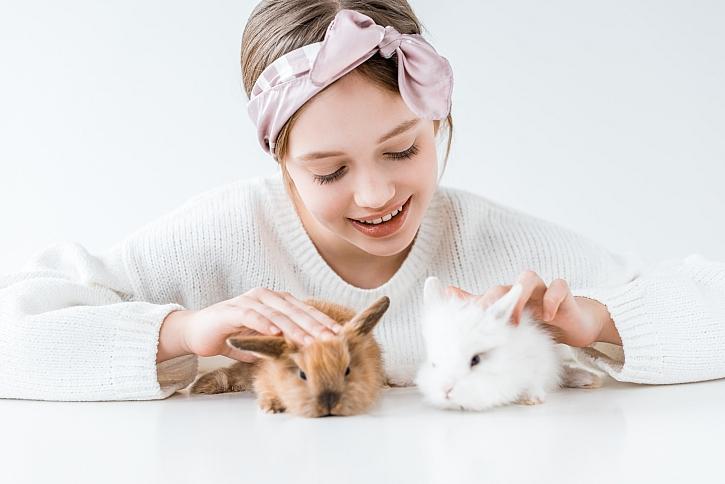 Malí králíčci