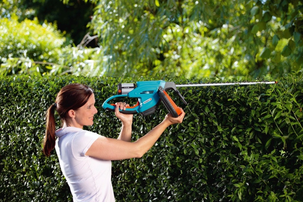 Jak stříhat živý plot